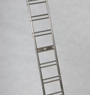 Arkwall-Leiter Höhe 240cm